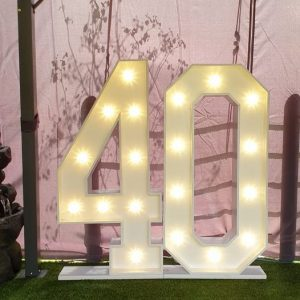 Giant 40 LED Numbers